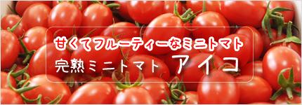 ミニトマト アイコ