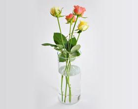 花瓶に生ける