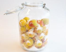 梅干(容器に梅と塩を入れる)