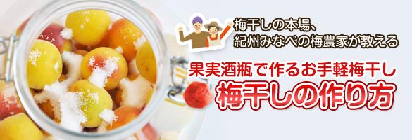 果実酒瓶で作る梅干の作り方
