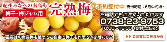 完熟梅の販売