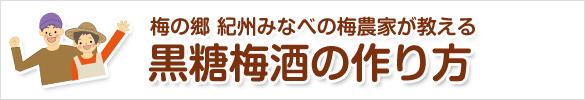 黒糖梅酒の作り方(美味しい黒糖梅酒レシピ)