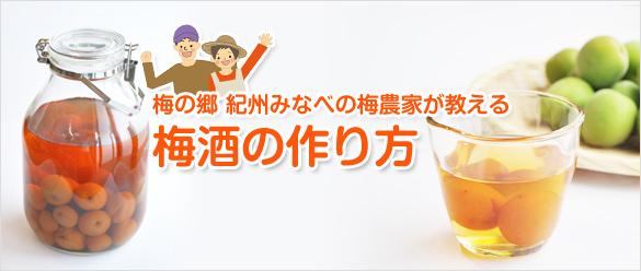 梅酒の作り方(美味しい梅酒レシピ)
