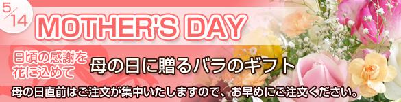 バラ フラワーギフト 母の日