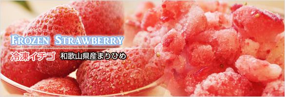 冷凍イチゴ ストロベリー