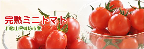 ミニトマト 和歌山県産